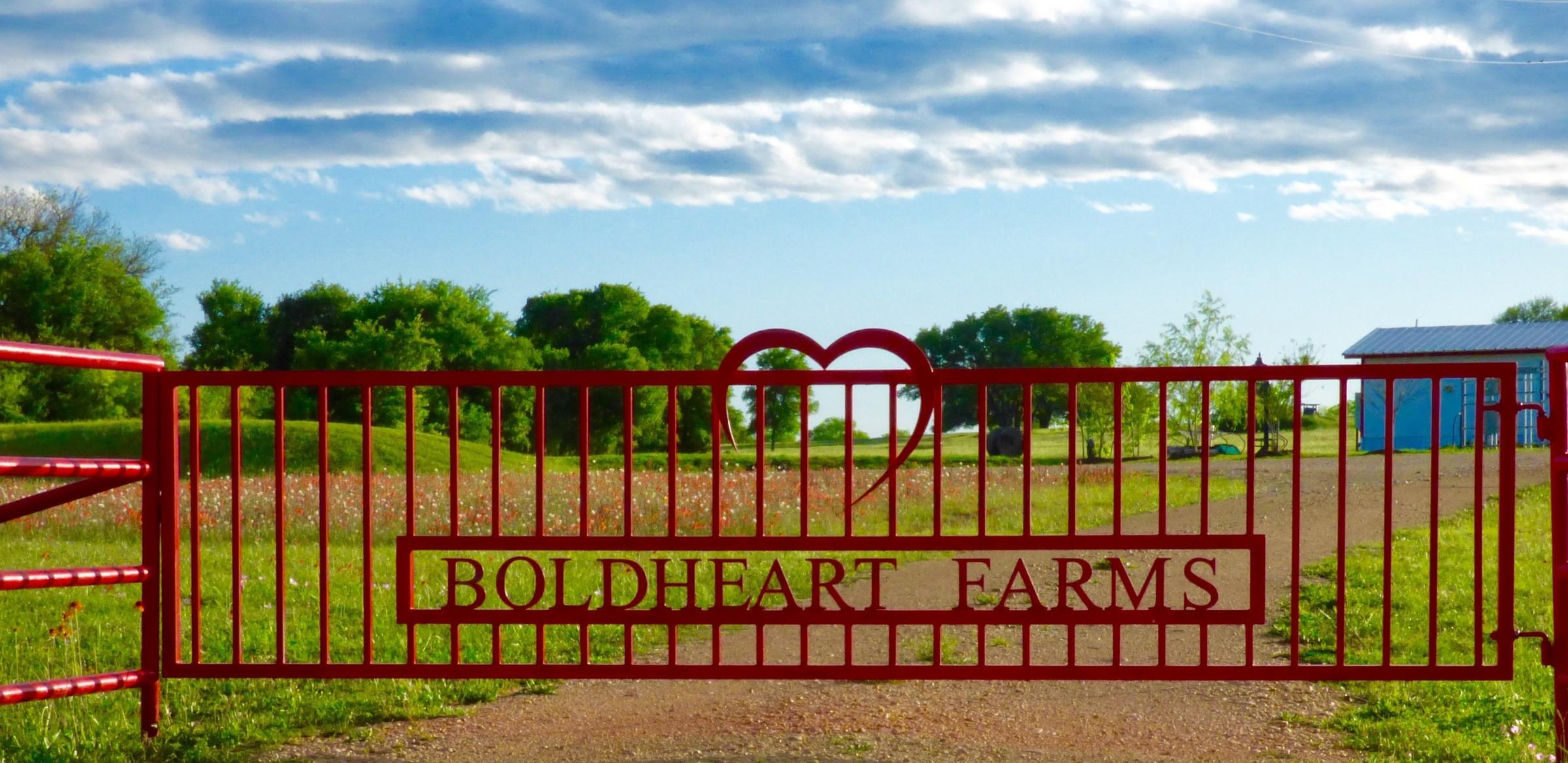 boldheart farms